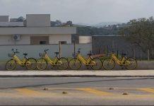 Yellow-Urbanova