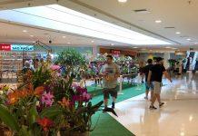 CenterVale Shopping-urbanova