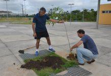 Plantio de Árvores Parque Ribeirão Vermelho-Urbanova